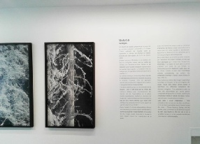 lettres-adhesives-texte-exposition.jpg